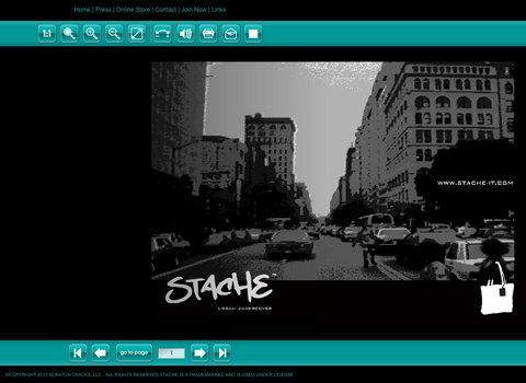 100301-stache-web.jpg