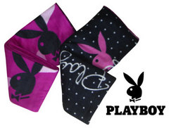 100315-playboy-blanket.jpg