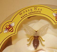 110207-honeyBee-2.jpg