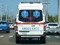メルセデスベンツ社製の救急車