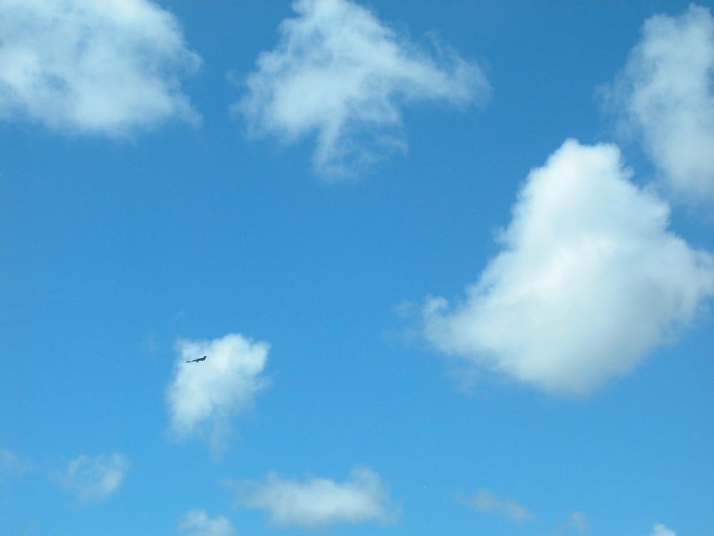 アメリカ空軍のステルス戦略爆撃機 B-2スピリット