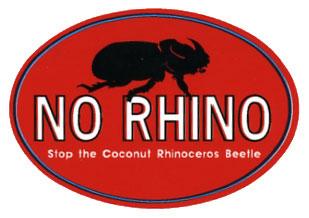 NO RHINO グアムではサイカブトムシは害虫です