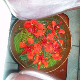 枕の間から、きれいなお花が見えます