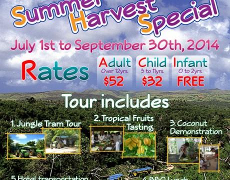ハマモトトロピカルフルーツワールド 2014年 夏の収穫スペシャル