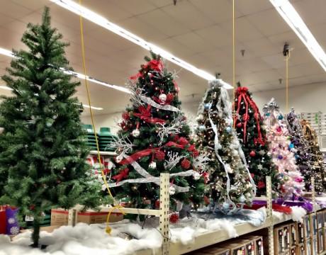 クリスマスツリー(Kマート)